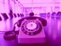 telefon-magenta-300