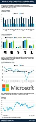 (Microsoft Quartalszahlen Q1/2013 (Grafik: Statista / http://de.statista.com/themen/239/microsoft/infografik/845/kennzahlen-von-microsoft/)