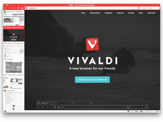 Vivvalid Browser (Screenshot: ZDNet)