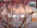 windows-7_support_ende (Screenshot: CNET)