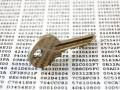 Schlüssel_Key (Bild: Shutterstock/Cousin_Avi)