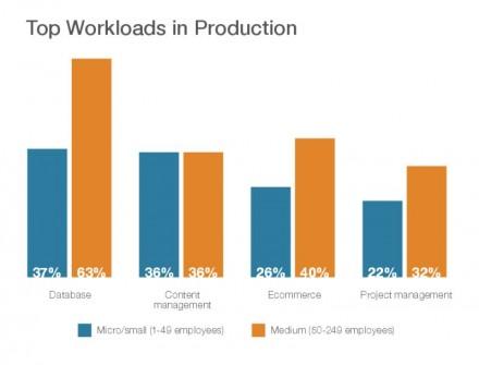IaaS-Nutzung durch KMU in Deutschland (Grafik: Parallels).