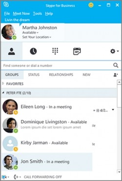 Skype-4B-Look-and-Feel (Screenshot: Microsoft)
