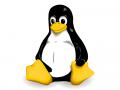 linux-tux (Grafik: Larry Ewing)
