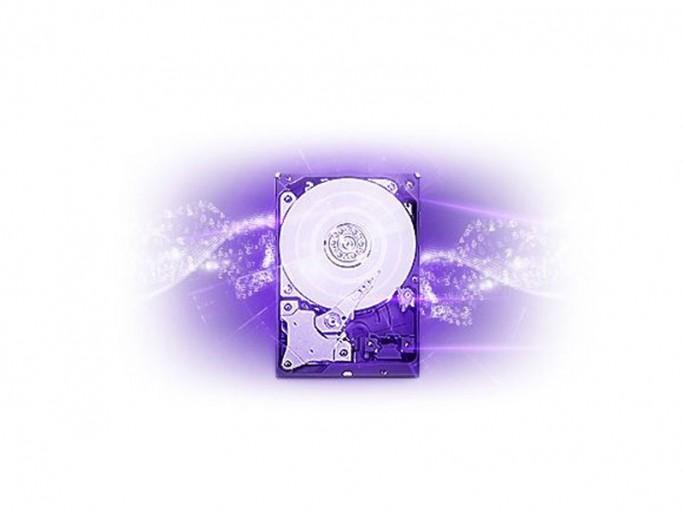 wd-purple-festplatten (Bild: WD)