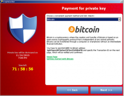 cryptolocker-bitcoin-f-secure (Screenshot: F-Secure)