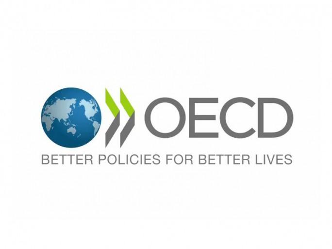 OECD Logo (Grafik: OED)