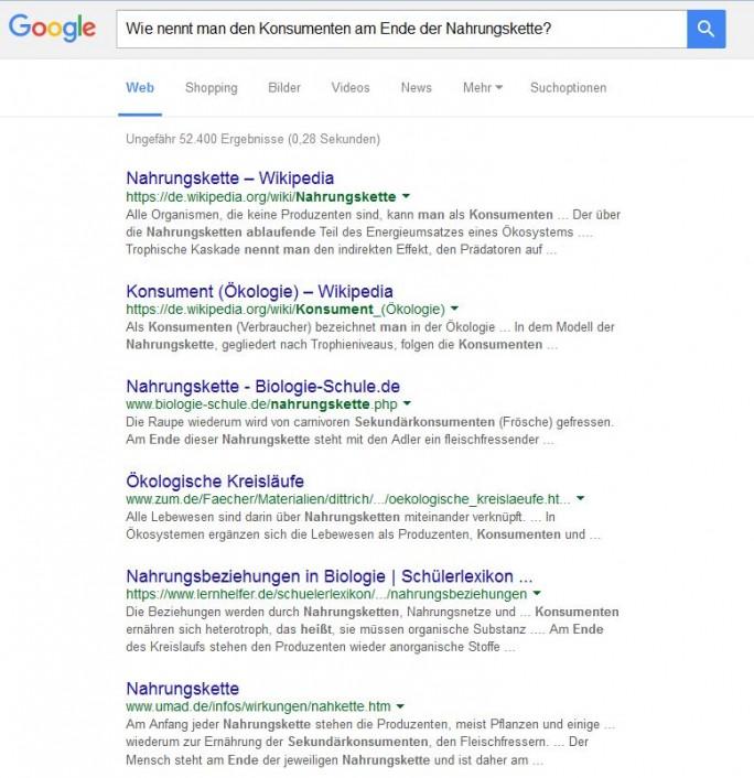 BBei vielen dem von Bloomberg genannten Beispielen ähnlichen Anfragen landet einfach Wikipedia auf Platz eins der Trefferlisten (Screenshot: ITespresso).