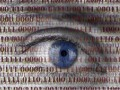 privacy_shutterstock (Bild: Shutterstock)