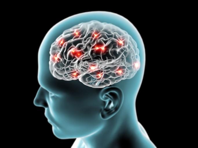 Hirnforschung (Bild: Shutterstock/Naeblys)