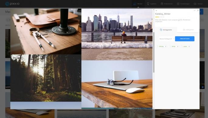 Das Startup Pixx.io wurde erst 2015 gegründet. Dementsprechend schlicht und aufgeräumt wirkt die Bedienoberfläche der Bild- und Medienverwaltungs-Software. (Screenshot: Pixx.io)