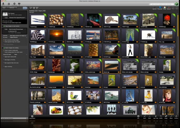 Der Screenshot zeigt Photo Supreme von ID Imager Systems, eine professionelle Software für das Digital Asset Management in Unternehmen. (Screenshot: ID Imager).