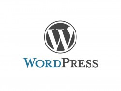 Wordpress (Logo: WordPress)