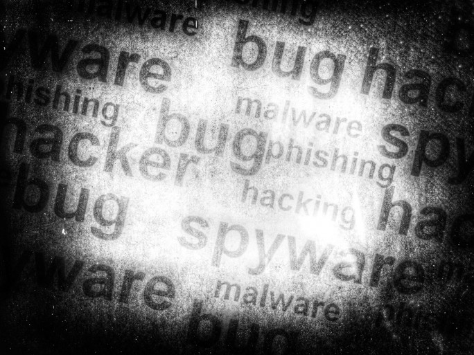 Bug Security (Bild: Shutterstock)