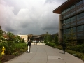 microsoft-campus-02